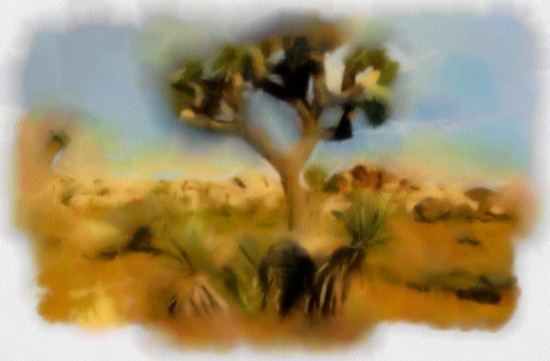biomes2_DAP_Andys WaterColors3